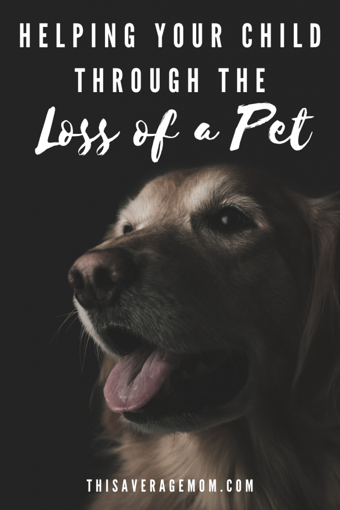 Dealing with the loss of a pet is never easy, but it's especially hard when you also have to help your kids process their own pain too. On the blog, I'm sharing some ways we helped our 6 year old through the death of her dog.